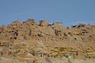 paysage aride - ile de Djerba - Tunisie